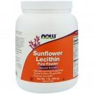 Sunflower Lecithin Pure Powder (454 gram) - Now Foods