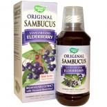 Feuilles de grande camomille, 380 mg (180 Capsules) - Nature Way