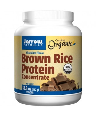 Organic- Brown Rice Protein Concentrate Chocolate Flavor (532 gram) - Jarrow Formulas