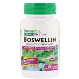 Herbal Actives- Boswellin- 300 mg (60 Vegetarian Capsules) - Nature's Plus