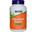 Odorless Garlic Concentrated Extract (250 Softgels) - Now Foods
