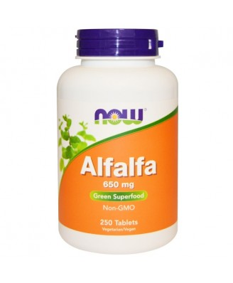 Alfalfa 650 mg (250 tablets) - Now Foods